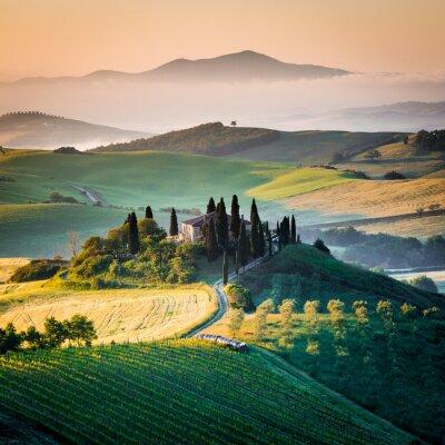 Obraz Mattino w Toskanii, paesaggio e Colline