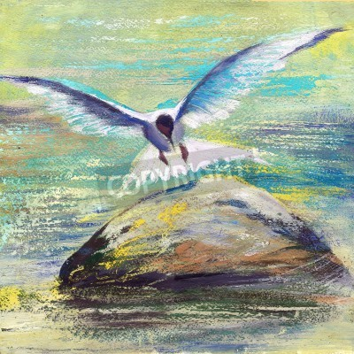 Obraz Mewa latania nad wodą