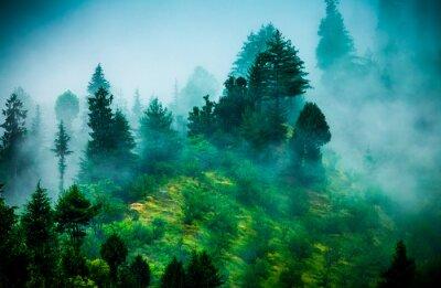 Obraz mgła