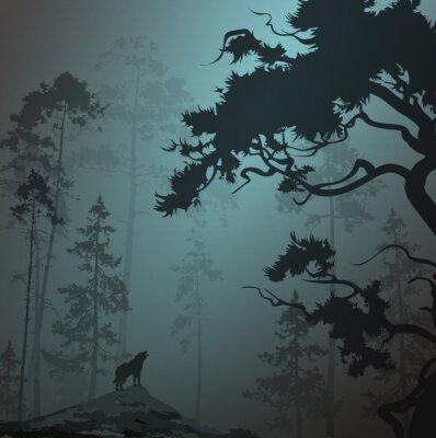 Obraz mglisty krajobraz z sylwetką lasu, sosny i wilk, księżyca