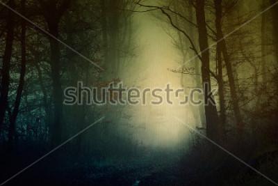 Obraz Mistyczna tapeta z ciemnego lasu
