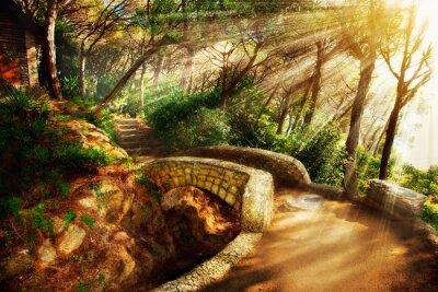 Obraz Mistyczne Park. Stare drzewa i Starożytny kamienny most. Droga