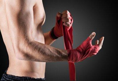 Obraz MMA.
