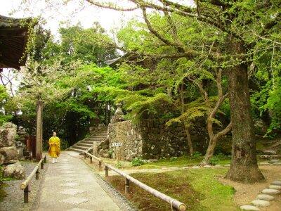 Obraz mnich w świątyni ogrodzie