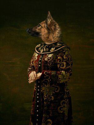 Obraz Model like medieval royalty person in vintage clothing headed by dog head on dark vintage background.