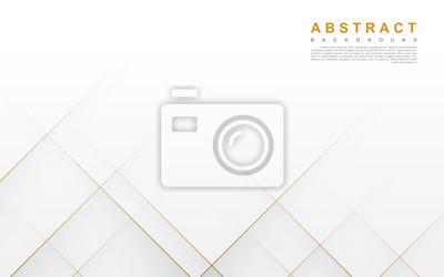 Obraz Modern abstract light silver background vector. Elegant concept design with golden line.