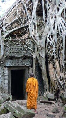 Obraz moine à Angkor (Cambodge)