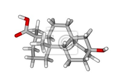 Molekularna struktura stewiolowych