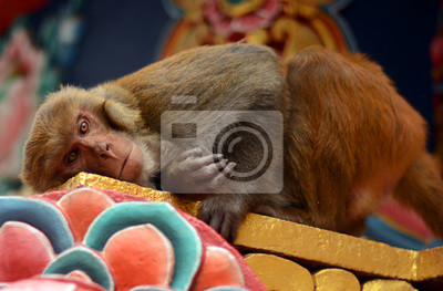 Monkey Temple, Nepalu, Katmandu. Swayambhunath