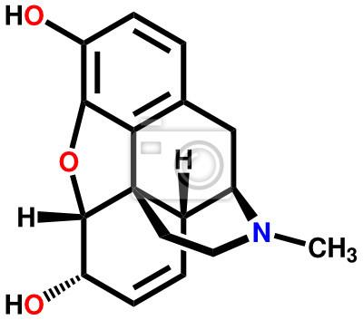 Morfina strukturalny