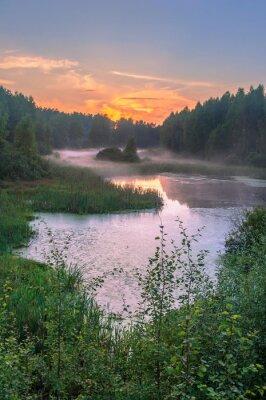 morning at foggy lake
