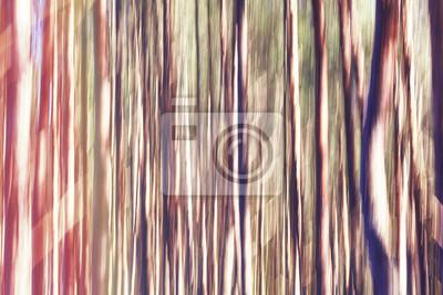 Motion zamazany obraz drzew, abstrakcyjne tło lub tapetę.