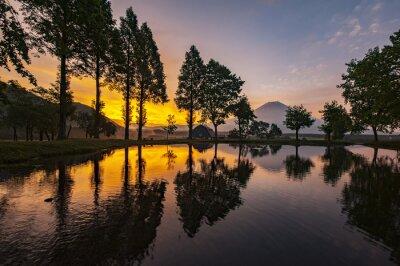Obraz Mount Fuji Mount Fuji