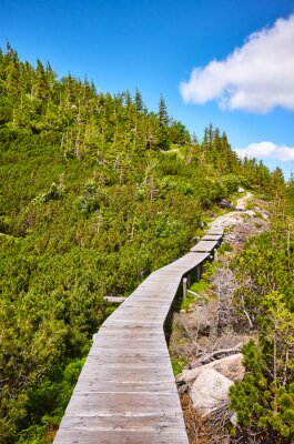 Mountain wooden bridge trail in Karkonosze National Park, Poland.