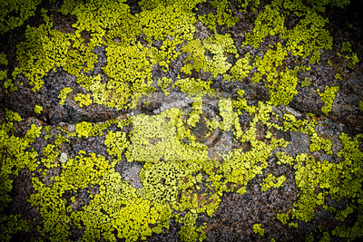 Mroczny wzór tła grungy rock tekstury