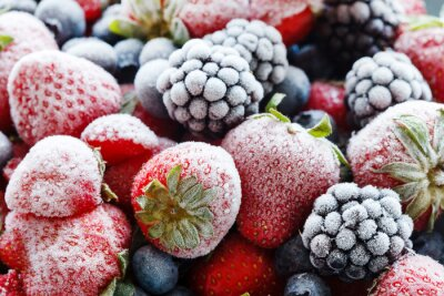 Obraz mrożone jagody