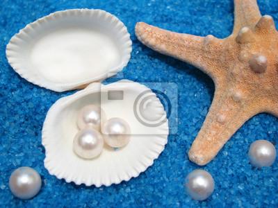 muszle perły i gwiazdki na niebieskim piasku morze