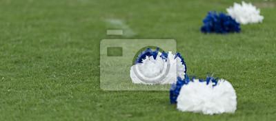 Obraz Niebieski i biały ducha cheerleaderek pom poms na polu trawy