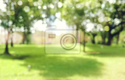Obraz nieostre bokeh ogrodowych drzew w słoneczny dzień