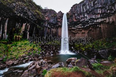 Obraz Niesamowity widok na wodospad Svartifoss. Sceniczny wizerunek piękny natura krajobraz. Popularna atrakcja turystyczna. Położenie Park Narodowy Skaftafell, lodowiec Vatnajokull, Icelandia, Europa. Pięk