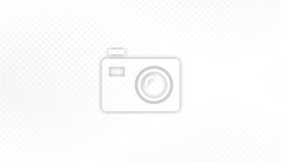 Obraz Nowoczesne półtonów białe i szare tło. Koncepcja projektowania dekoracji dla układu internetowego, plakat, baner