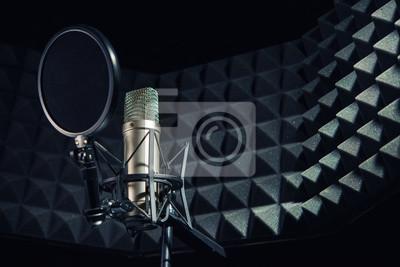Obraz Nowoczesny profesjonalny mikrofon w studio nagrań