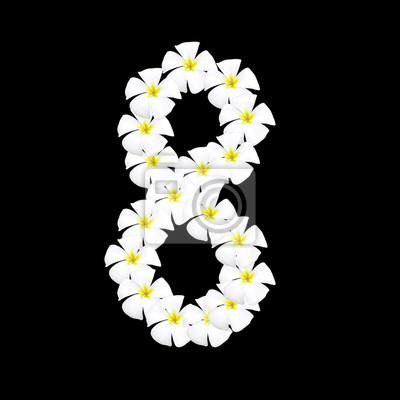Obraz Numer arabski plumeria kwiat na czarnym tle