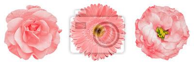 Obraz Obiektów kartkę z życzeniami na rocznicę, ślub, matki i dzień projektowania kobiet