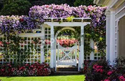 Obraz Ogród botaniczny biały płot z bramą i kwitnących kwiatów