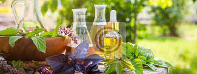 Obraz Oil for skin care, massage from natural ingredients, herbs, mint in glass jars and test tubes on a green background in the garden on the nature, natural cosmetics