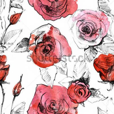 Obraz Ołówek, akwarela ręcznie używany realistyczny czerwony kwiat róży wzór. Ilustracja sztuki malowania botanicznego. Starodawny projekt szkicownik, książki podróży, karty z pozdrowieniami, pocztówka, za
