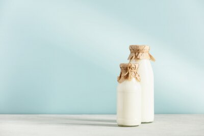 Obraz on dairy plant based milk in bottles and ingredients on blue background. Alternative lactose free milk substitute
