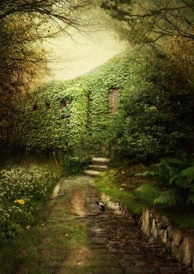Obraz Opuszczony dom