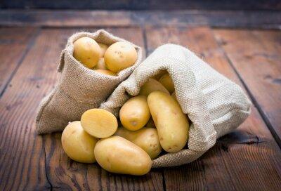Obraz Organicznych ziemniaków w worku jutowym