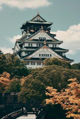 Obraz Osaka Castle