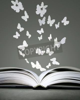 Obraz Otworzyć książkę z białych motyli na szarym tle