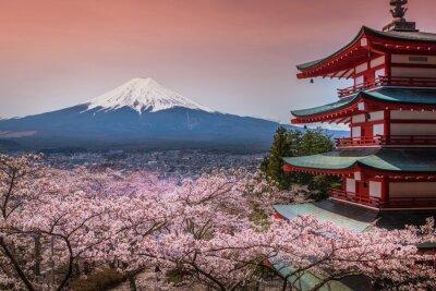 Pagoda Chureito z sakura & Beautiful Mt.fuji View