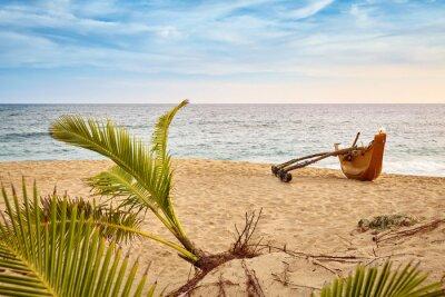 Palm tree and a fishing boat on a beach at sunset, Sri Lanka.