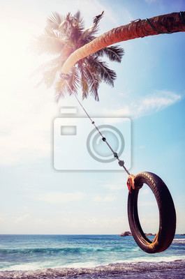 Palm tree with tire swing against the sun, summer holiday concept, color toning applied.