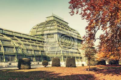 Obraz Palmiarnia w Wiedniu, Austria. vintage stylizowane