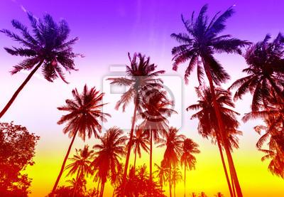 Palmy na tropikalnej plaży sylwetki o zachodzie słońca.