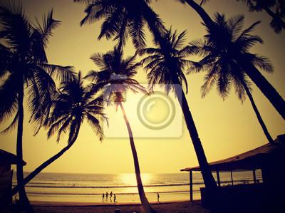 Palmy sylwetki przed słońcem, zabytkowe stylu retro, Goa, Indie.