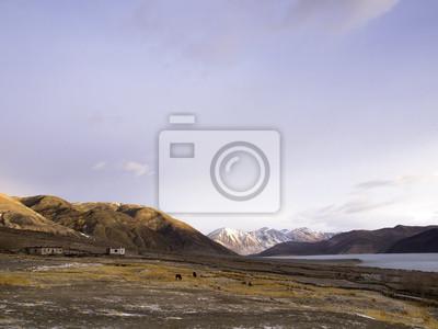 Obraz Pangong Lake w Ladakh, Indie