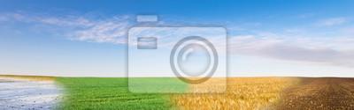 Obraz Panoramiczny kolaż cztery sezon pole pod niebieskim niebem