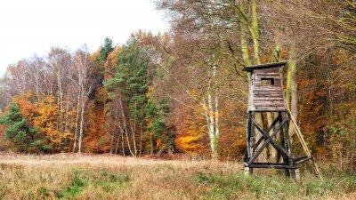 Panoramiczny widok z ambony myśliwskiej jesienią.