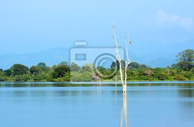 Park Narodowy Uda Walawe, Sri Lanka. Azja.