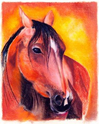 Obraz Pastell - Pferd