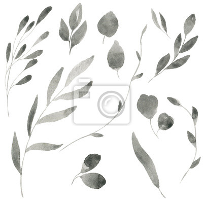 Pattern Watercolor Plant Flower Botanical