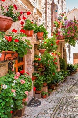 Obraz Pełne kwiatów ganku w małym miasteczku we Włoszech, w Umbrii