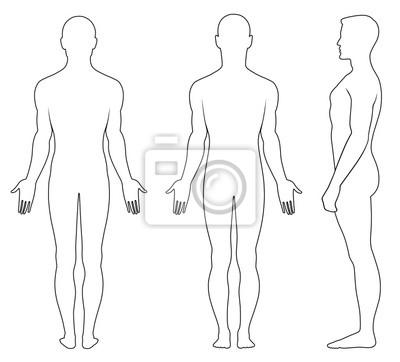 Obraz Pełny profil długość, z przodu, widok z tyłu o stałym człowieka nagiego